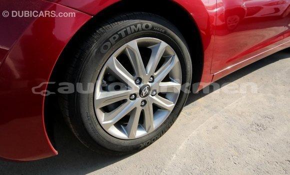 Buy Import Hyundai Elantra Red Car in Import - Dubai in Ahal