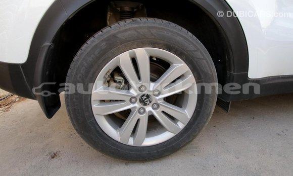 Buy Import Kia Sportage White Car in Import - Dubai in Ahal